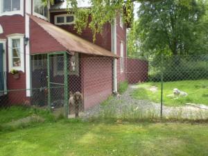 Fjäkelmyrans - Hunddagis och hundtrim i Borlänge 302fe1a7fcc47
